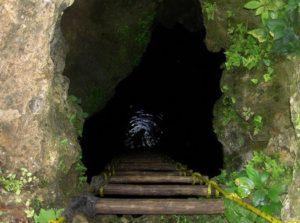 Cenote Punta Laguna