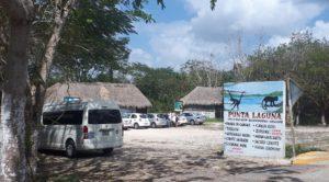 Punta Laguna Affenreservat