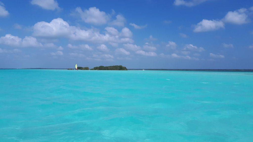 Bacalar Isla de los pajaros